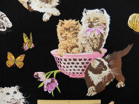 輸入 USAコットン 生地 布 ホワッツ ニュー プッシー キャット?8223B アレキサンダーヘンリー ファブリックス 動物柄 ネコ ねこ 猫柄 商用利用可能