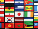 入園入学 生地 布 USAコットン ワールドフラッグ 国旗 5391BLACK ライリーブレイク 商用利用可能