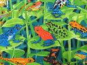 USAコットン 生地 布 レインフォレスト フロッグス オン リーブス C2297Brite 爬虫類 カエル タイムレストレジャーズ 商用利用可能