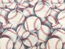 輸入 USAコットン 生地 布 ベースボール 野球 C215...