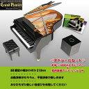 【送料無料!】  【送料無料】【取寄品】Grand Pianist(グランドピアニスト) スペシャルセット ブラック [ピアノ/セガトイズ]【T】楽天HC【e-netshop】