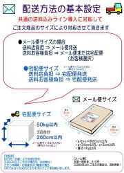 【送料無料】レジン正規品コスメティックツイーザークロネコDM便にて発送(代金引換不可)