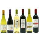 【チリ産ワイン】代表ブランド『トキ・アンディーノ』『コノ・スル』『サンタ・ヘレナ』赤白各1本お得な6本セット!!