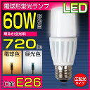 LED電球 T形 E26 60W形相当(EFD15型) 7W 光りが広がるタイプ E26口金 電球色 昼光色