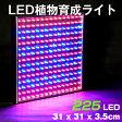 LED電球 植物育成 サンプランター 水耕栽培ランプ 室内用 14W LED 100V 植物育成用ランプ プラントライト 園芸