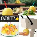 送料無料 果汁搾り機カジュッタ(CAJYUTTA)CJT3-04 ホテル・バー・カフェ・テーマパーク・サービスエリアなどでのカクテル/サワー/ゼリ…
