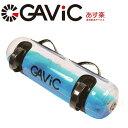 GAViC ガビック ウォーターバッグ GC1220 トレーニング エクササイズ ストレッチ 筋ト