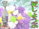 花シリーズ「花しょうぶ10袋セット」6%OFF 【smtb-k】【ky】 京都 訳あり わけあり 開店セール1209 結婚式 ブライダル ギフト プチギフト 金平糖 こんぺいとう KONPEITOU