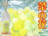 宝石みたいに綺麗で可愛い金平糖の小袋です。お得な10袋セット。花シリーズ「菜の花10袋セット」京都 訳あり わけあり 開店セール1212 結婚式 ブライダル ギフト プチギフト 金