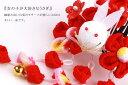 Usagi_2color_02
