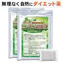 二十二減肥茶 約4ヵ月分120包(ギムネマシルベスタ/無添加/ダイエット茶/お茶/健康茶/バナバ葉/すっきり/ティーバッグ)
