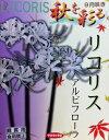 秋を彩る球根 ひがんばな リコリス・アルビフローラ(白花) 4球セット送料無料:本州・四国・九州地区限定(球根の同梱は可能です。)