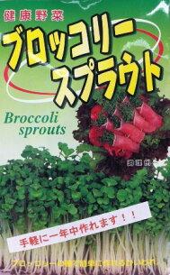 スプラウト ブロッコリー ダイエット ブロッコリ