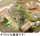 京都大好き!抹茶大好き!おためしお抹茶スイーツセット0804お得10