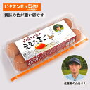 ●代引き不可 送料無料 山元さん家のええたまご 10個×12パック 卵 玉子 たまご タマゴ 41000
