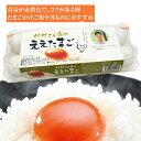 【クール便発送】●代引き不可 送料無料 竹村さん家のええたまご 10個×12パック 卵 玉子 タマゴ たまご