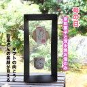 【母の日ギフト 早割 】清水焼お湯のみと京和菓子うば玉  井...