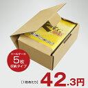 トールケース5枚収納用トムソン抜き 組立式梱包箱20枚セット【あす楽対応】