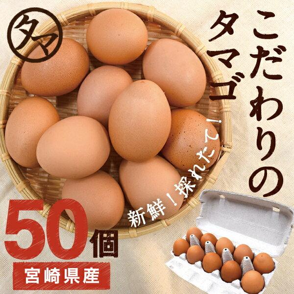 【送料無料】宮崎産タマゴ50個九州育ちのこだわり...の商品画像