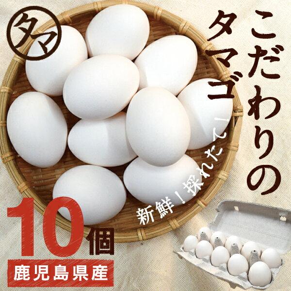 【九州 たまご】こだわり新鮮なとろ〜りたまご10個品質・衛生すべて管理された安心・安全なた…...:kyunan:10001830