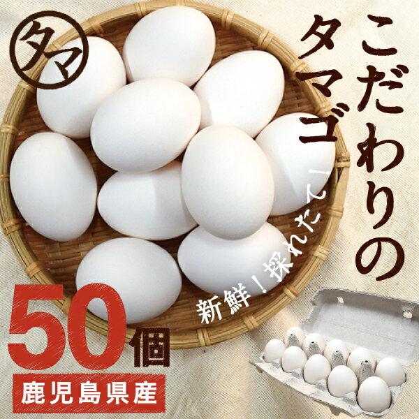 【送料無料】九州育ちの絶品たまご50個こだわり新鮮なとろ〜りたまご品質・衛生すべて管理された安心・安全なたまごビタミンEは一般卵のなんと10倍の美味しく栄養もたっぷり♪【生卵/タマゴ/たまご】