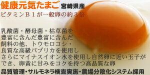 【送料無料】宮崎産タマゴ50個九州育ちのこだわ...の紹介画像3