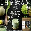 【送料無料】栄養全しぼり、「母なるスムージー」たっぷりの野菜とフルーツと酵素から誕生した カラ...