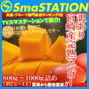 【2セット以上で送料無料】スマステーション紹介!お得な訳あり宮崎完熟マンゴー味わえる惜しくもギフト外