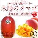【送料無料】太陽のタマゴ(大玉1玉)最高級フルーツ宮崎の厳し...