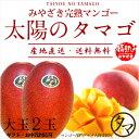 【送料無料】太陽のタマゴ(大玉2玉)最高級フルーツ宮崎の厳し...
