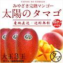 【送料無料】太陽のタマゴ(大玉3玉)最高級フルーツ宮崎の厳しい基準を乗り越えた『香