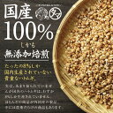 【送料無料】まるごと食べられる、はと麦(ハトムギ...