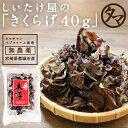 【送料無料】ぷりぷり!コリコリ!タマチャンの無農薬乾燥キクラ...