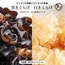 【送料無料】ぷりぷり!コリコリ!タマチャンの無農薬
