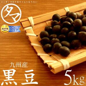 【送料無料】九州産 黒豆 5KG(27年度産 一等級黒豆)楽天市場特別価格で「黒豆」販売中…...:kyunan:10001581