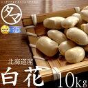 【送料無料】北海道産 白花豆 10kg(令和元年度産)楽天市場特別価格で「白花豆」販売中!ホックホクで絶妙の食感で甘さのある美味しさ..