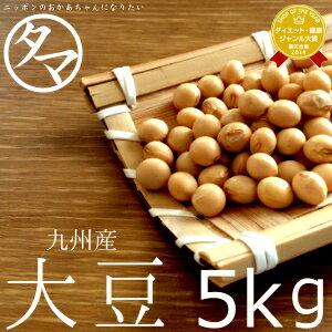 【送料無料】九州産 大豆 5kg(27年度産 一等級ダイズ)楽天市場特別価格で「大豆」販売…...:kyunan:10001463