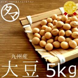 【送料無料】九州(熊本)大豆 5kg(30年度産 ダイズ)|業務用 料亭用 ホテル用 イベント用 生大豆 大豆の栄養 国産 大豆 豆 <strong>エクオール</strong>