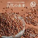 国産赤米1kgご飯と一緒に炊けば極上のピンク色の美味しいご飯に♪赤米特有の成分ポリフェノール(タンニン)を始め、良質なタンパク質・ビタミン・ミネラルが豊富で昔から健康の為の食材として重宝されてきた雑穀です!