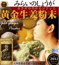 【送料無料】九州産黄金しょうが粉末 (生姜粉末)希少な黄金生姜100%の料理や飲料何にでも使える国産生姜粉末乾燥ショウガ・しょうが紅茶 にも ウルトラしょうが ジンジャーパウダー 乾燥しょうが みらいのしょうが