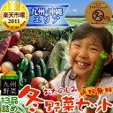 【送料無料】九州野菜セット (たまご付)九州野菜13品ベストセレクション九州の美味しい野菜をタマチャンショップが選りすぐりでたっぷり13品詰めてお届け!【ご当地野菜/九州/宅配】【お試しセット】
