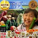 九州野菜お試し詰め合わせセット九州野菜18品ベストセレクション九州で採れた美味しい野菜をタマチャンショップが選りすぐりでたっぷり18品詰めてお届け!