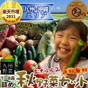 【送料無料】九州野菜ミニミニお試しセット九州野菜7?8品でお届け九州で摂れた美味しい野菜をタマチャン