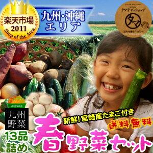 【送料無料】九州野菜セット (たまご付)九州野菜13品ベストセレクション九州の美味しい野菜…...:kyunan:10000285