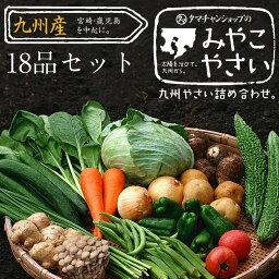 【送料無料】九州野菜お試し詰め合わせセット野菜18品ベストセレクション九州で採れた美味しい野菜をタマチャンショップが選りすぐりでたっぷり18品詰めてお届け!|野菜セット 九州産 野菜 詰め合わせ 野菜セット 送料込