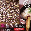 超レア食材!【送料無料】超希少な紫もち麦500g(福岡県産)紫が濃い状態で収穫したもち麦です。もち麦に比べてポリフェノールの1種、アントシアニジンを多く含み、もち麦自体の水分量が多く、より一層もちもちぷちぷちの食感が楽しめます【国産もち麦/無添加】