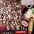 超レア食材!【送料無料】超希少な紫もち麦1kg(福岡県産)紫が濃い状態で収穫したもち麦です。もち麦に比べてポリフェノールの1種、アントシアニジンを多く含み、もち麦自体の水分量が多く、より一層もちもちぷちぷちの食感が楽しめます【国産もち麦/無添加】