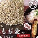 【送料無料】もち麦1kg (国産・無添加・28年度産)もっちりプチプチとした食感と食物繊維が豊富!高