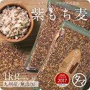 【送料無料】超希少な紫もち麦1kg(九州産/29年度産)紫が濃い状態で収穫したもち麦です。もち麦に比...