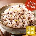 九州の十五穀米【400g】 食品 常温保存 十五穀米 米 雑...